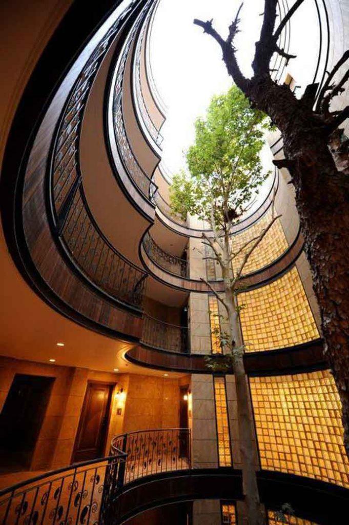 فضاي خالي مياني خانه رويایی و درخت