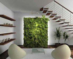 تصوير دوعدد مبل و ديوار با گياه در طراحی داخلی