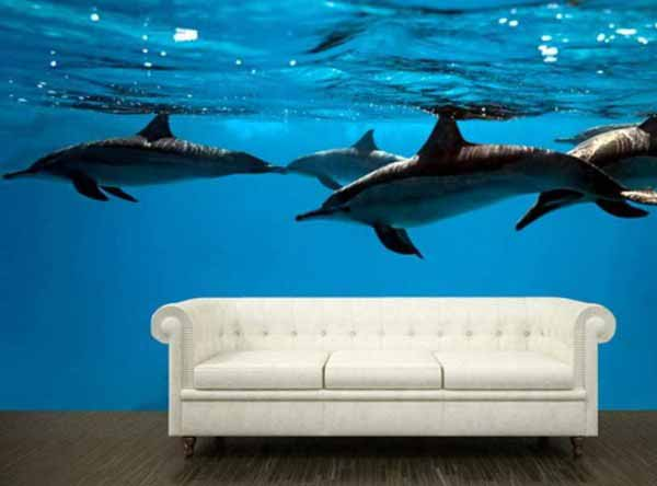 تصوير سه بعدی از دلفينها در اتاق نشيمن