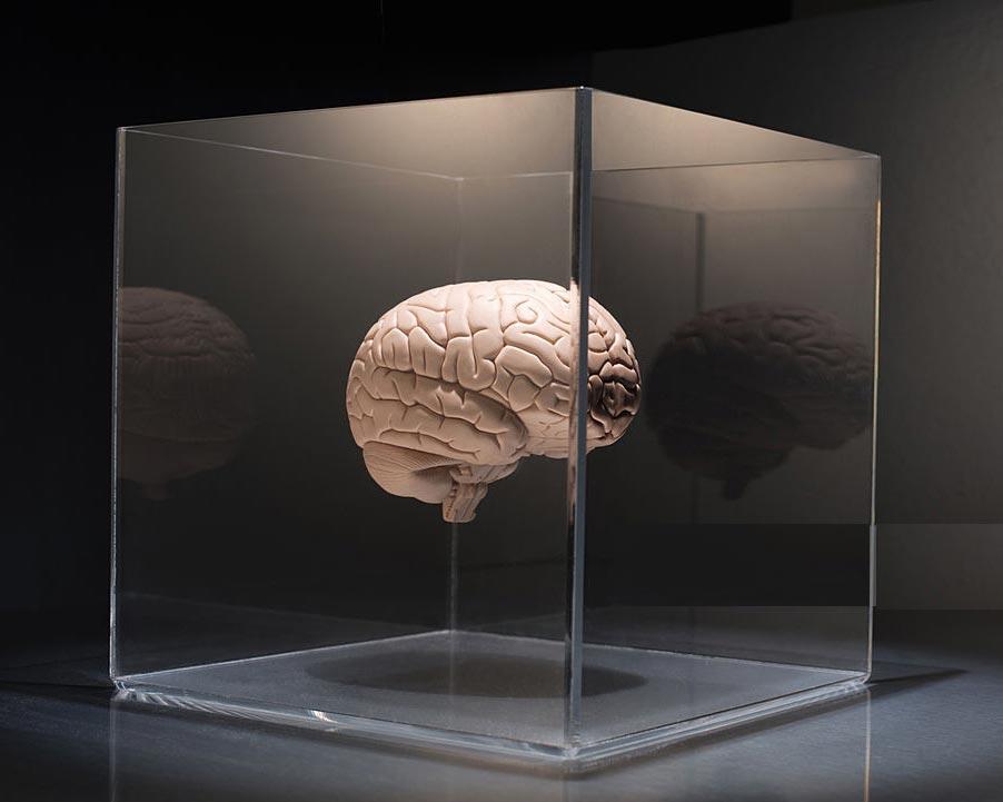 تصوير مغزي در مکعب شيشه اي شیشه مات شونده