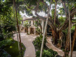 حياط و درختان زيبا در خانه لوکس