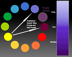 نمودار هارمونی رنگ ها
