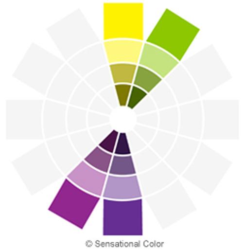 نمودار هارمونی مکمل دوتايی در تئوری رنگ