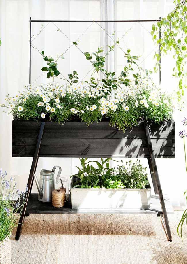 گیاهان تصفیه کننده هوا در گلدانی کنار پذیرایی