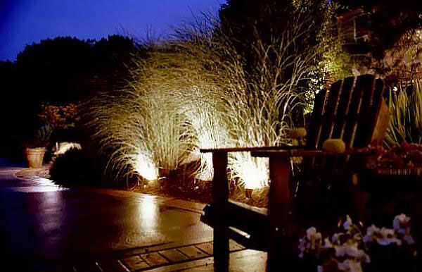 قرار دادن چراغ ها درون گیاهان به منظور نورپردازی باغچه