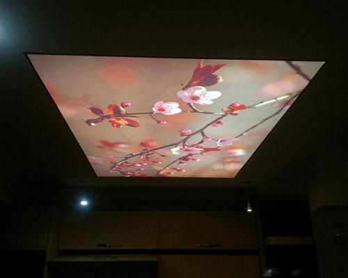 طراحی و نصب سقف کشسانی با طرح شکوفه