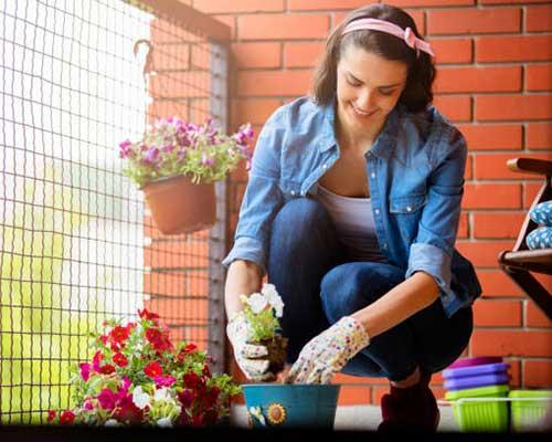 خانمی در حال گل کاری در گلدان می باشد برای اجرای زیبا تر روف گاردن تلاش می کند