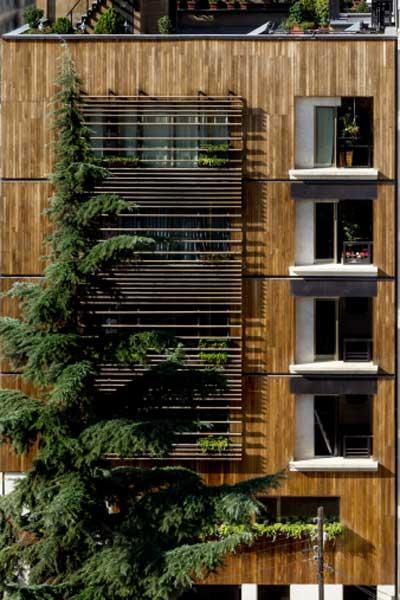 اجرای پنجره ترمال بریک در نمای ترمووود