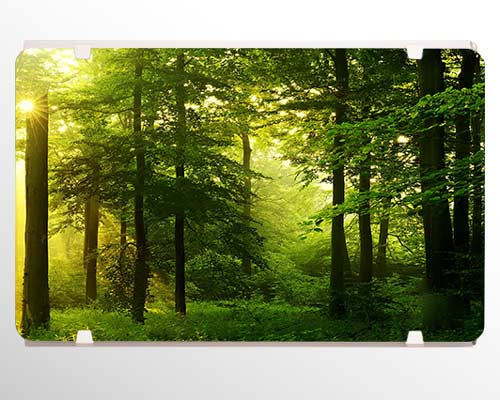 شوفاژ طرح درخت جنگل سبز