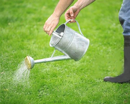 حذف نیاز به آبپاشی مرتب و حفظ منابع آب در چمن های مصنوعی در مقایسه با چمن طبیعی