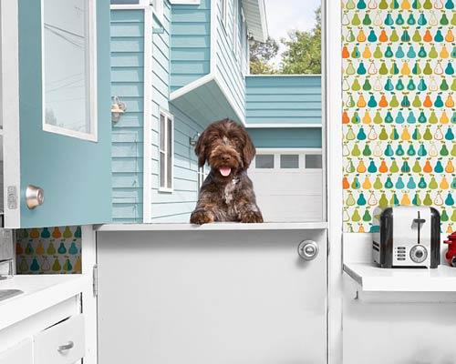 درب هلندی با قابلیت باز شدن نیمه بالایی به طور جداگانه قابل کاربرد در آشپزخانه و جداسازی محل حیوان خانگی