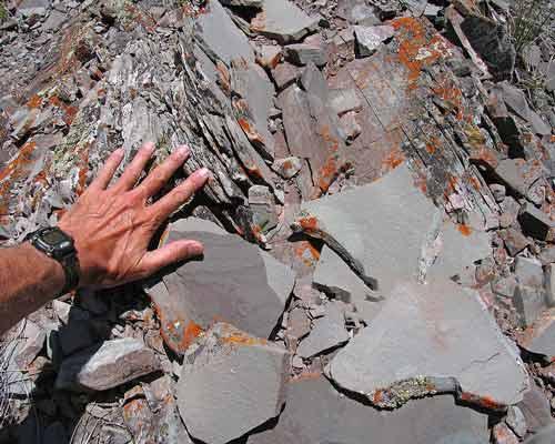 سنگ رسوبی شیل از مواد تشکیل دهنده آجر