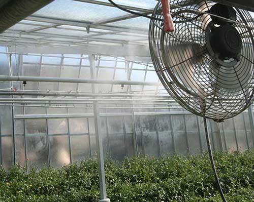 مه پاش پنکه ای برای گلخانه
