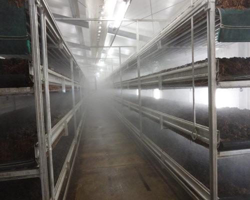 مه پاش قارچ برای ایجاد رطوبت در سالن پرورش قارچ