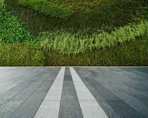 محوطه سنگی با یک دیوار بلند سبز پوشیده از گیاهان