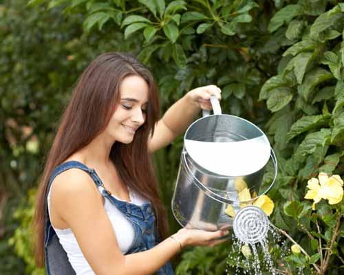خانمي که در حال آب دادن به ديوار پوشيده از گياه است