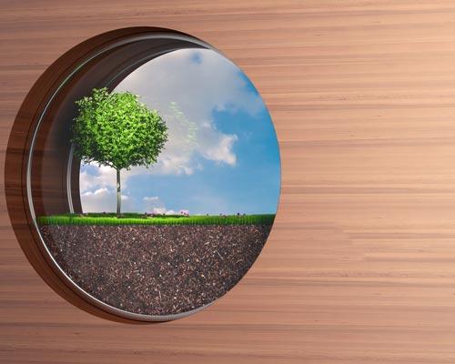 نماي فانتزي از ديوار زنده که يک درخت در آن قرار گرفته است و آسماني عاري از هر گونه گردو غبار که به کمک برگ درختان و گياهان تصفيه شده اند