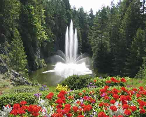 فواره اي زيبا که در داخل باغ قرار گرفته و اب در جريان مي باشد و اطراف آن با گل هاي رنگارنگ تزيين شده است